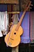 Guitarra s montañero — Foto de Stock
