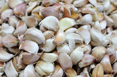 Fresh seed of garlic for background — Stock Photo