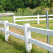 Stock Photo: Long white fences