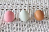 Three types of eggs — Stock Photo