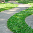 Walk way in garden — Stockfoto #37798809