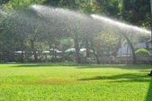 Watering green lawn — Stock Photo
