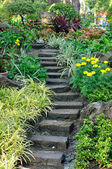 Stairways into flowers garden — Stock Photo