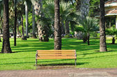 Long brown bench in public garden — Stock Photo