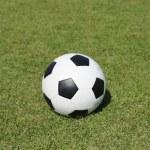 Classic ball on green yard — Stock Photo #40188543