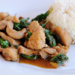 Holy-basil fried chicken with jasmine rice. — Stock Photo