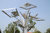 SOLAR-CELL Tree — Stock Photo