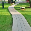 Walk way through public park, with dogs. — Stock Photo #42366939