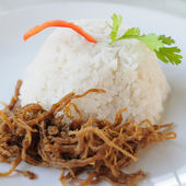 Shredded pork with jasmine rice — Foto Stock