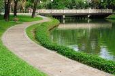 Walk-way in public garden — Stock Photo