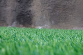 Green grass with dirty wall — Stock Photo