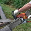 The chainsaw cutting the wood — Foto de Stock