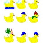Rubber duck set — Stock Vector