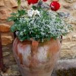 Garden urn — Stock Photo