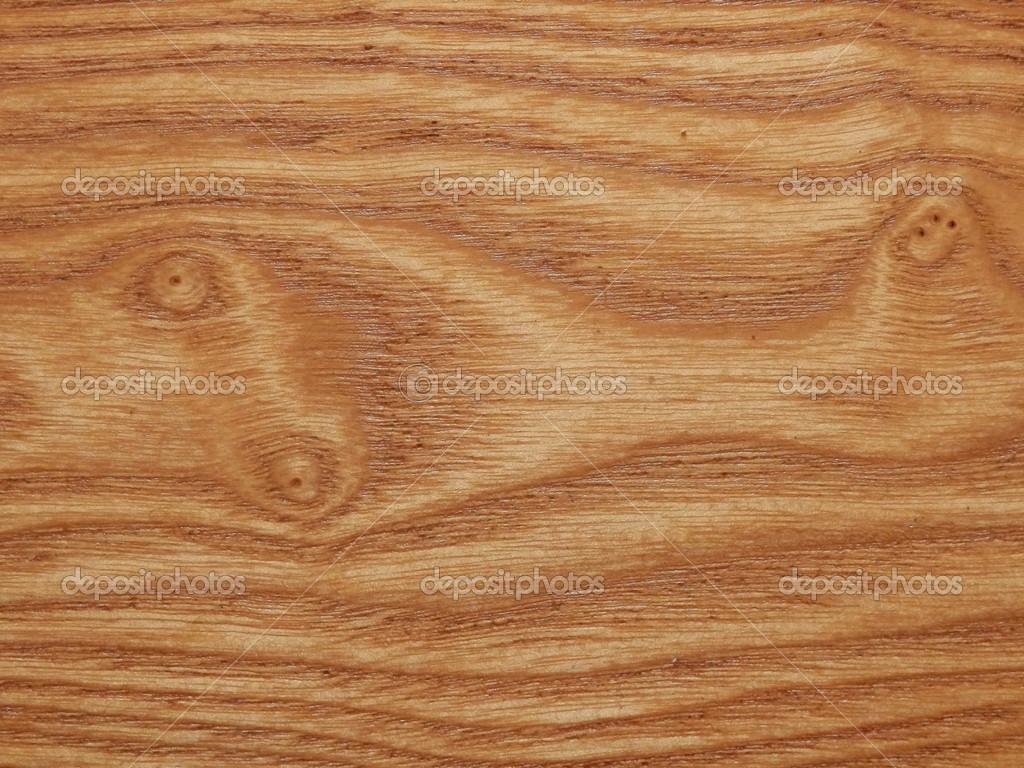 vetas de la madera del olmo foto de stock 19804435