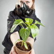 Last plant on the Earth — Stock Photo #17152277