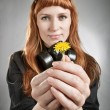 Dandelion in hands — Stock Photo