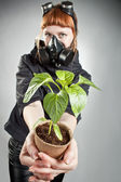 Last plant on the Earth — Stock Photo
