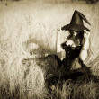 Stock Photo: Witch in field