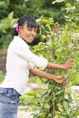 Young african woman breaking a branch of a small tree — Stock Photo