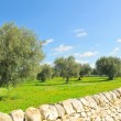 Royalty-Free Stock Photo: Sicilian countryside