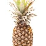 Single pineapple isolated on white — Stock Photo