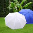 Umbrellas — Stock Photo #17167153