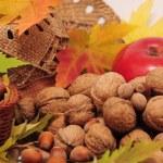 Tasty nuts — Stock Photo