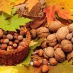 Tasty nuts — Stock Photo #18029677