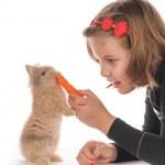 Pretty girl feeding rabbit — Stock Photo #18343937
