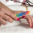 Manicure process - Stock Photo