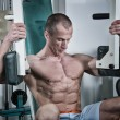 Stock Photo: Body Building