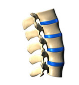 Lumbar Spine - Lateral view Side view — Stock Photo