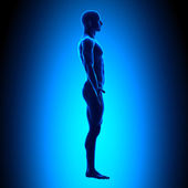 Blank Posture Side - Blue Medical Position — Stock Photo
