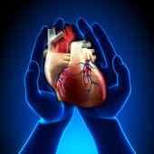 青い手の本当の心 — ストック写真