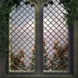 Gothic window in the evening — Stock Photo