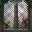Gothic window in the evening — Stock Photo #22668279