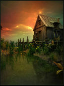 Old cabin on the swamp — Stock Photo