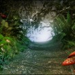 Magic passage in an old forest — Stock Photo #25167865