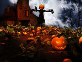 Scarecrow in the field of pumpkins — Stock Photo