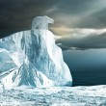 Белый медведь на вершине айсберга — Стоковое фото