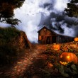 Shed on the pumpkin hill - Stockfoto
