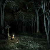 Night in the dark forest — Stock Photo