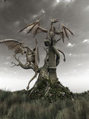 Dragons on a gnarled tree — Stock Photo
