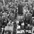 Stock Photo: Black and White New York City panorama