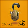 Snake-symbol of 2013 — Stock Photo