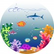 Beautiful underwater world — Stock Photo