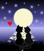 Romantic night — Stock Photo