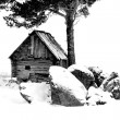 Old Farmhouse — Stockfoto #19853867