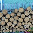 Woodpile near a wooden fence — Stock Photo